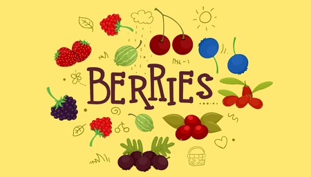 Colorful Illustration Featuring the Different Members of the Berry Family with the Word Berries Written Above It Stock Photo