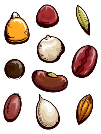 Illustration Featuring the Seeds of Different Types of Fruits and Vegetables
