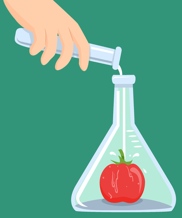 Conceptual Illustration Featuring a Man Pouring Chemicals Inside a Flask with a Tomato Inside Stock Photo