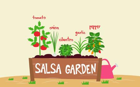 Illustratie van een Salsa-tuin gemaakt van tomaten, koriander, uien, knoflook en peperplanten Stockfoto - 80162599