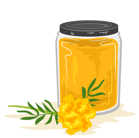 Illustration of a Glass Jar Full of a Yellow Dye Made from Marigold Flowers Stock Photo