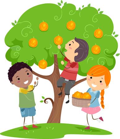 나무에서 오렌지를 많이 수확하는 Stickman 키즈의 그림