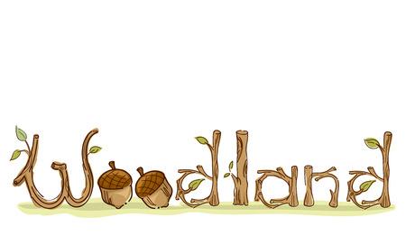 小枝やどんぐりで飾られたカラフルなタイポグラフィ図 Word ウッドランドの特長