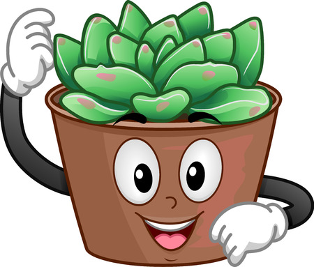Illustration of a Succulent Plant Mascot in a Pot. Echeveria Agavoides
