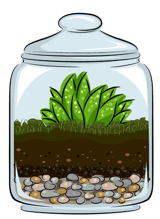 Illustration of Soil and Plants inside a Closed Glass Terrarium