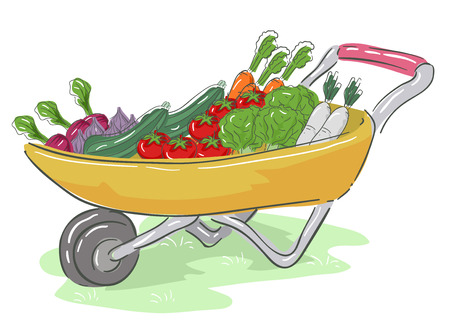Illustration of a Wheelbarrow Full of Crops like Lettuce, Tomatoes, Cucumber, Carrots, Radish and Onion