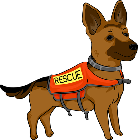 strapped: Cute Animal Illustration Featuring an Adorable German Shepherd with a Vest Strapped to its Body