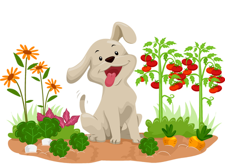 Illustration of a Happy Dog In the Middle of Vegetable Plants in the Garden Stock Photo
