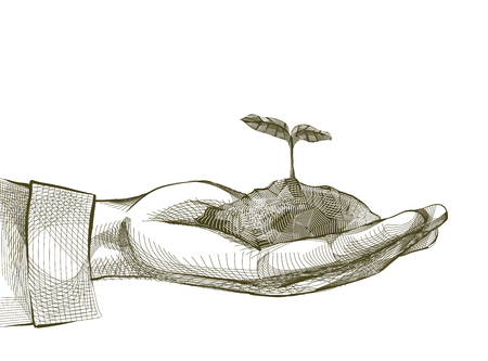 Illustration of a Hand Holding a Seedling. Crosshatching Drawing