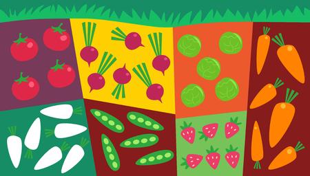 Illustratie van een Abstract Moestuinperceel Bestaande uit tomaat, radijs, bonen, aardbei, sla en wortelen