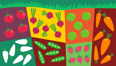 Illustration of an Abstract Vegetable Garden Plot Consisting of Tomato, Radish, Beans, Strawberry, Lettuce and Carrots