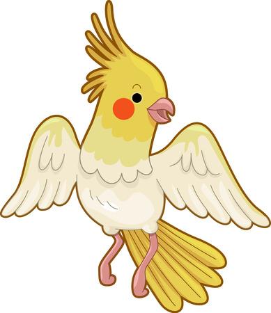 カラフルな Cockateil が羽をはばたかせる特徴かわいい動物イラスト