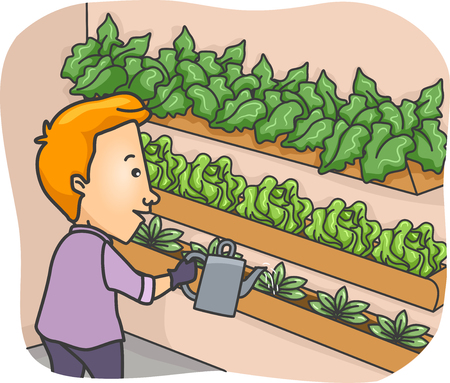 Illustration Featuring a Young Man Watering Plants Lined Up in a Plant Box Stock Photo
