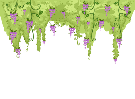 Illustration of a Hanging Wisteria Plant Border in Purple and Green