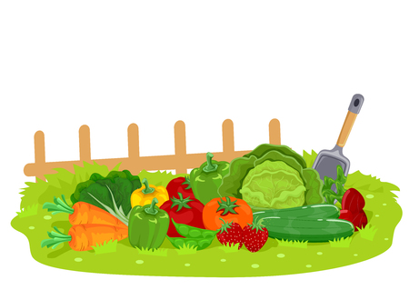 Illustration of Different Fruits and Vegetables in the Garden with Shovel and Fence Stock Photo