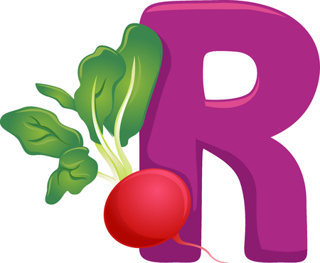 Illustration of Vegetables Alphabet, a Purple Letter R and a Radish