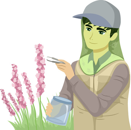 Illustration of a Teenage Guy Botanist Collecting Samples of a Plant Outdoors Wearing Net Mesh as Protection