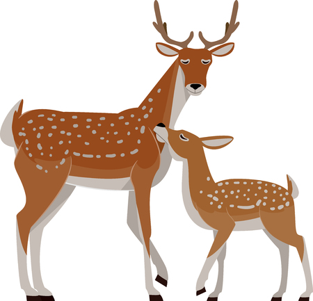 Illustration of a Deer with a Young Baby Deer, Fawn Imagens