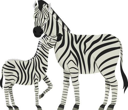 Illustration of a Zebra Mother with Her Young Zebra Called Foal Imagens