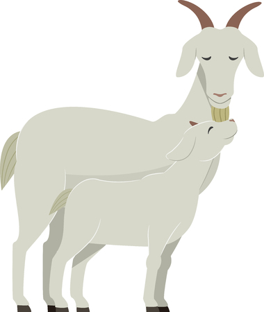 Illustration of a Mother Goat with Her Young Baby Goat called Kid Imagens