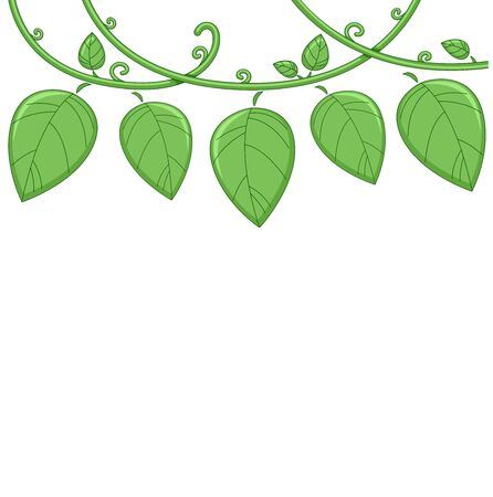Illustration of a Vine Border with Vines and Leaves