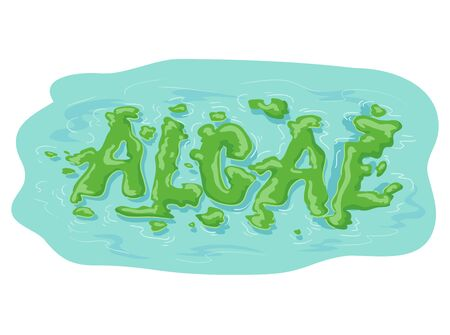 Green Algae Lettering forming On Water