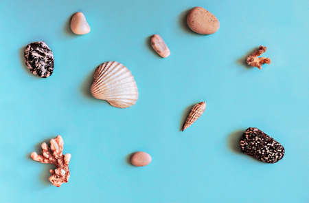 Abstract blue background with sea objects - pebble stones, seashells, corals. Design elements, flat lay, wallpaper