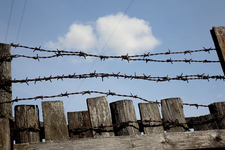 thorns  sharp: Fence with a barbed wire against the blue sky. A symbol of restriction of freedom.