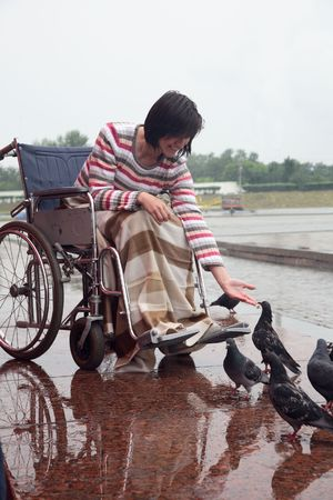 young woman in an invalid carriage feeds pigeons Stock Photo - 5072491