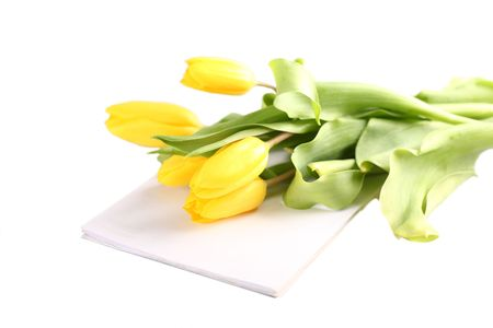 bouquet of yellow tulips lies on writing-book Stock Photo - 6708916
