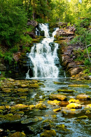 streams: Beautiful landscape with wood and a falls.