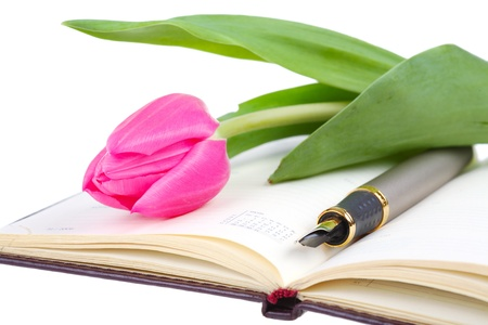 pink tulip lies on an open writing-book Stock Photo - 9185083