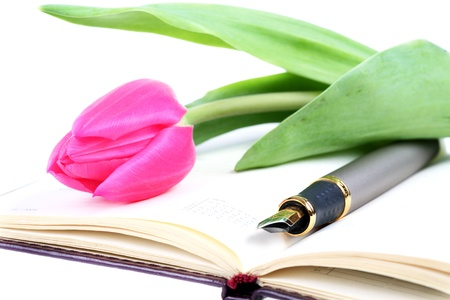 pink tulip lies on an open writing-book Stock Photo - 9185129