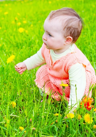 little girl walks on a glade with dandelions Stock Photo - 9918946