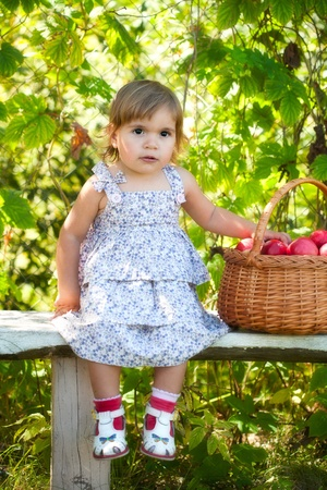 little girl sits on a bench and holds a basket with apples photo