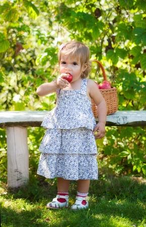 little girl eats a red apple in a garden photo