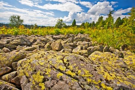 filed: View from mountains peak. Altai, Siberia