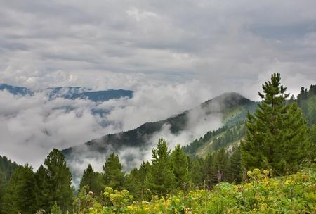 Foggy morning in mountains. Altai, Siberia. photo