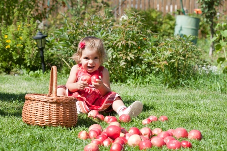 little girl collects the apples scattered on a grass in a basket Stock Photo - 10890916