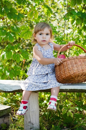 little girl sits on a bench with a basket of apples Stock Photo - 11008974