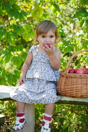 little girl sits on a bench with a basket of apples Stock Photo - 11008972