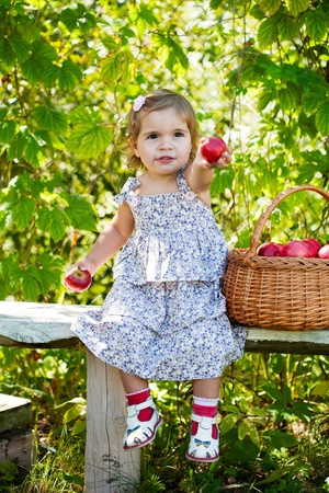 little girl sits on a bench with a basket of apples Stock Photo - 11008998