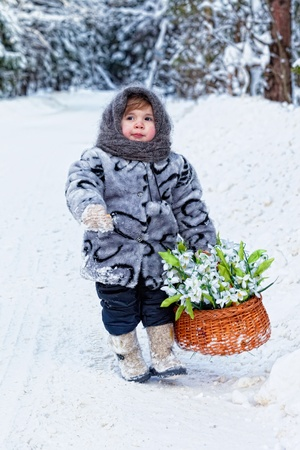 little girl in a winter wood with the big basket of snowdrops Stock Photo - 12720900