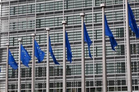 european parliament: European Union flags against the European Parliament building