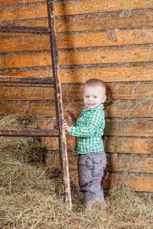 mow: little boy to stand near a ladder on a mow Stock Photo