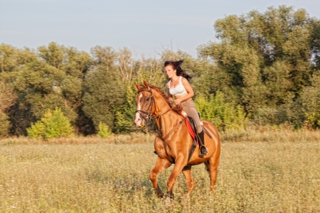 Beautiful girl riding a horse in countryside.  photo
