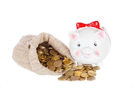 White a pig-coin box and the big bag with gold coins photo