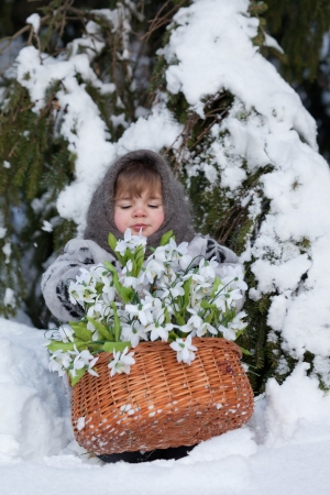 little girl in a winter wood with the big basket of snowdrops  Stock Photo - 15102978