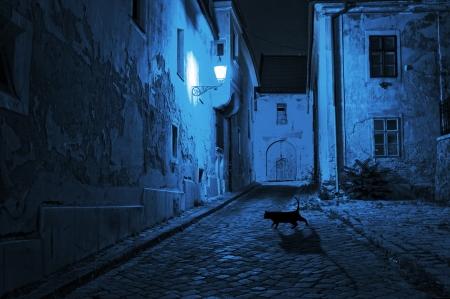 street lamp: black cat crosses the deserted street at night