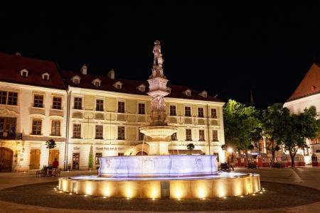 central square: BRATISLAVA, Slovacchia - 23 luglio: La fontana con illuminazione in una piazza centrale di notte a Bratislava, in Slovacchia, 23 luglio 2013 Bratislava � la pi� popolosa (462.000) e la citt� pi� visitata in Slovacchia.